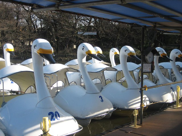 Visit ROAM THE GNOME Family Travel Directory for MORE SUPER DOOPER FUN ideas for family-friendly travel around the world. Search by City. Photo - Inokashira Park Swan boats