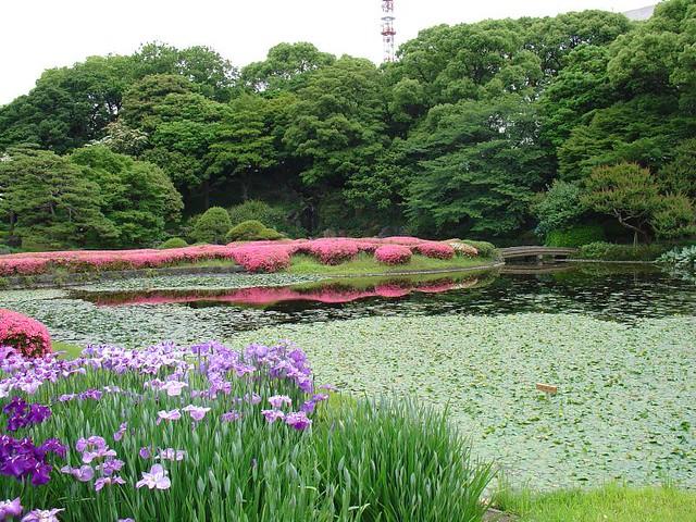 Imperial garden tokyo tour