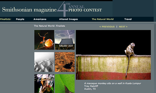 Smithsonian Contest Top Ten Winner - Natural World | by Stuck in Customs