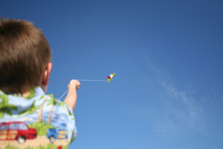 David Flies a Kite | by David Goshorn