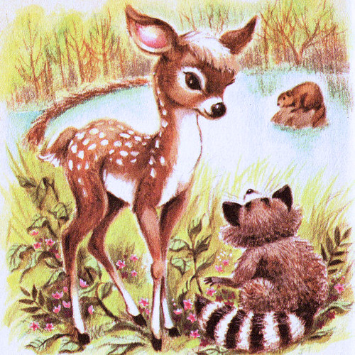 Little Raccoon Illustration | Little Raccoon Rand McNally ...