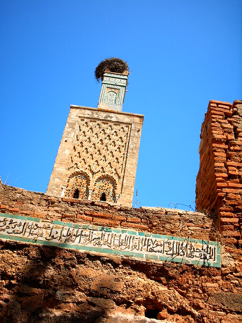 Chellah tower with stork's nest