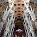 La Sagrada Família @ Barcelona