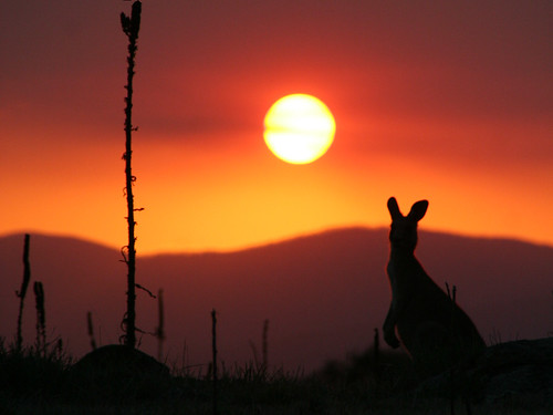 down under sunset | by Jirrupin