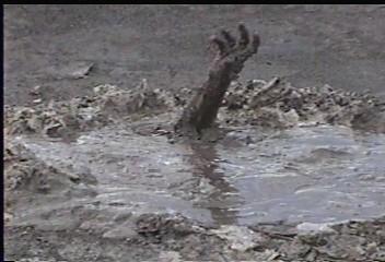 Big Mud Puddle   Photo