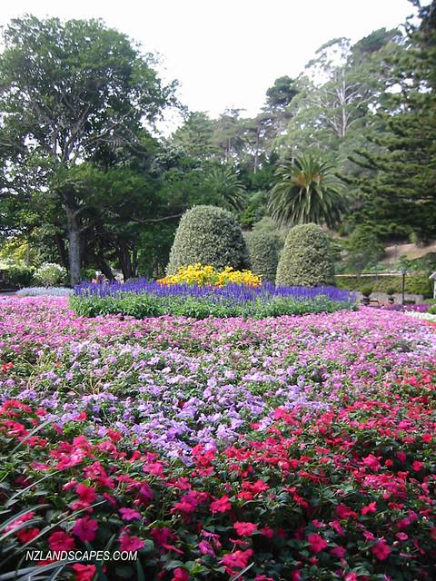 Main Gardens. Wellington Botanical Gardens. New Zealand Ph