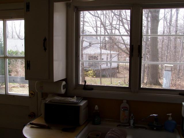 Kitchen back door windows over sink flickr photo for Kitchen back door with window