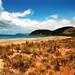 Beach, Great Ocean Road, Australia