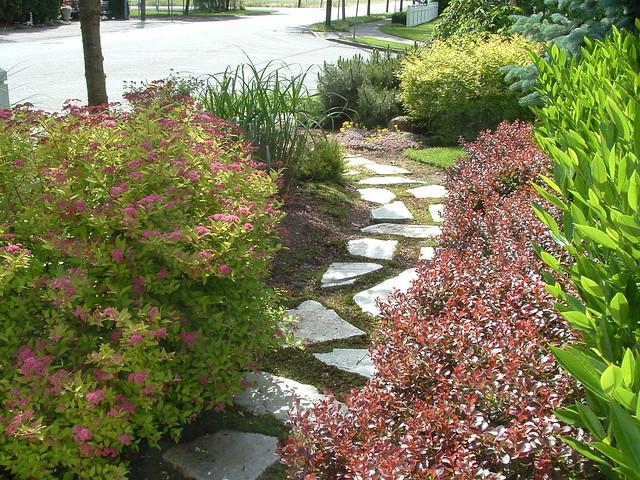 Front garden entry