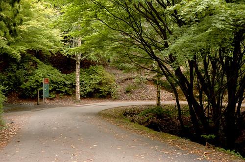 Mount Lofty Botanic Garden Owen James Flickr