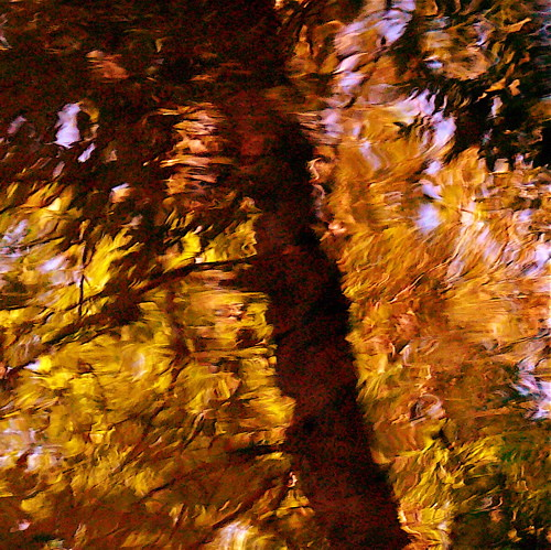 Van Gogh Effect II / Effet Van Gogh II! | by Denis Collette...!!!
