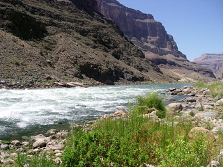 Grand Canyon at Tapeats Rapids looking west | by Al_HikesAZ