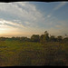 pano_foret_orleans