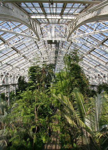 Temperate house kew gardens interior this is the largest flickr - Hello this is my new picture garden interior ...