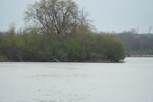 River Island Dundee Kl J