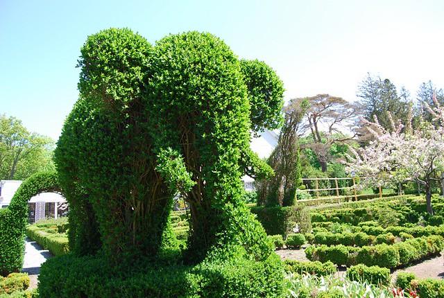 Green Animals Topiary Gardens Ri Katie Flickr