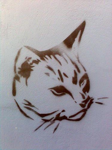 Spray Painting Cat