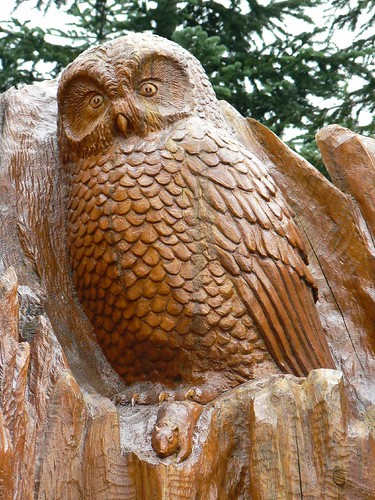 Carved owl on grouse mountain vancouver bc stephengg