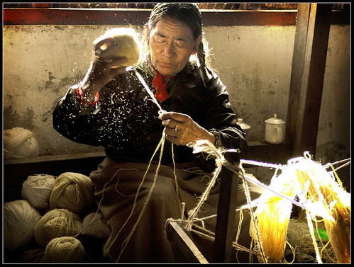 Wool | by Sukanto Debnath