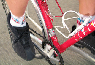 Socks du Jour: Fred Casts socks from Sock Guy | by Richard Masoner / Cyclelicious