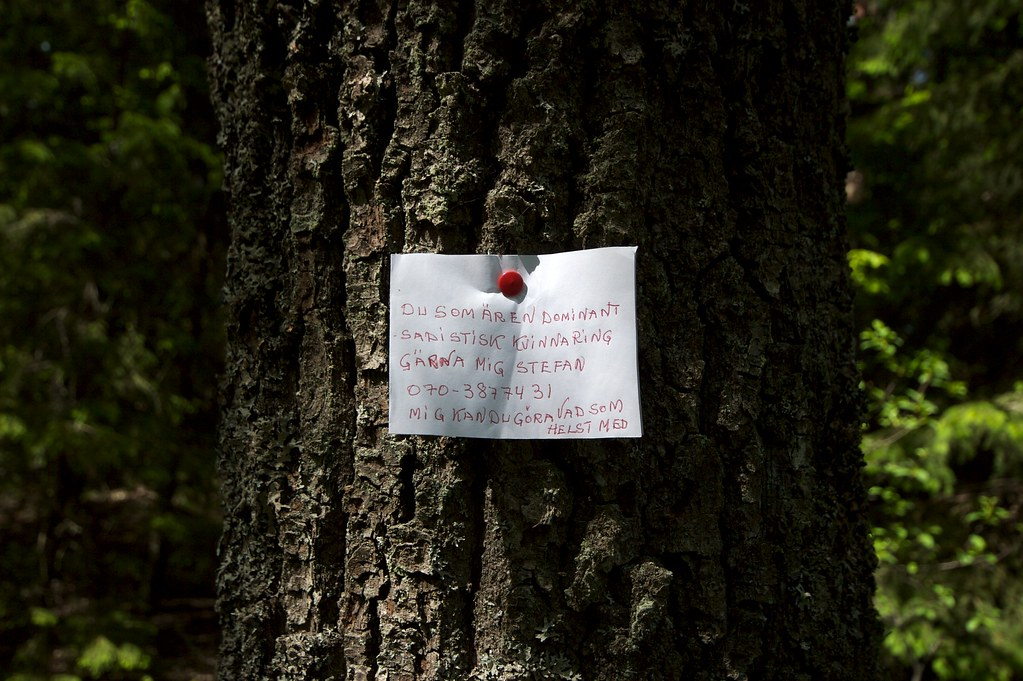 A note on a tree | &qu...