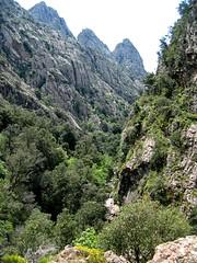 Ruisseau de la Lonca