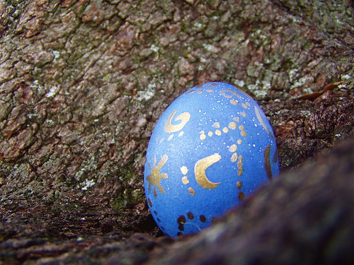 Egg | by hushed_lavinia