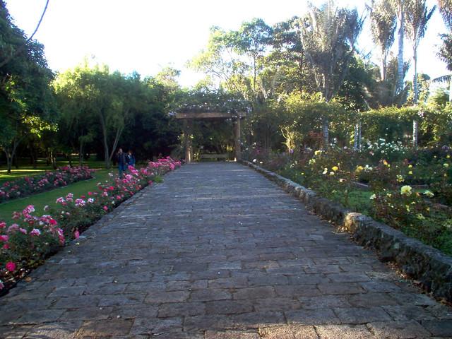 Jardin botanico bogota 04 victor hugo cardenas flickr for Jardin botanico bogota