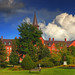 A Beautiful Afternoon at UVM - RAW