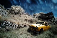 Stranded in Yellow | by Gilad Benari