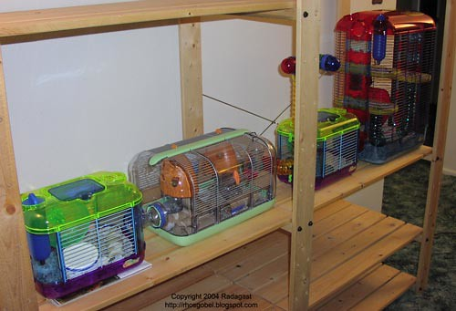 how to make a mouse cage
