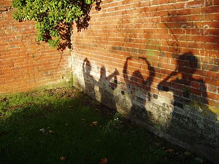 Wall Shadows | by Auntie P
