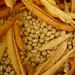 Fasulyeler - Beans