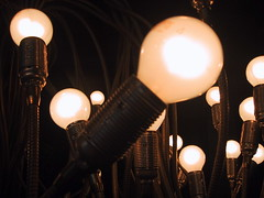 Light bulbs | by Spigoo