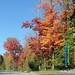 Fall coloring