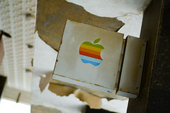 Where Apple's Go to Die | by miskan