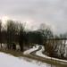 Michigan in January