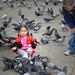 Monastic Bird Feeding