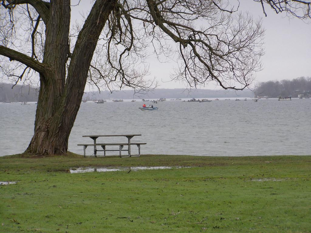 Perch fishing lake simcoe orillia ontario suzy snow for Lake simcoe fishing report