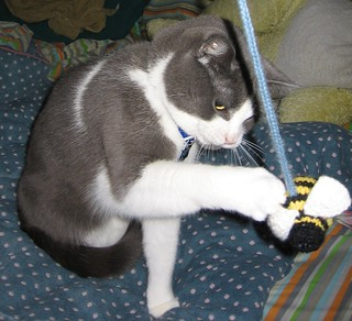 "Bumble Cat Toy | by ""penny"" was already taken"