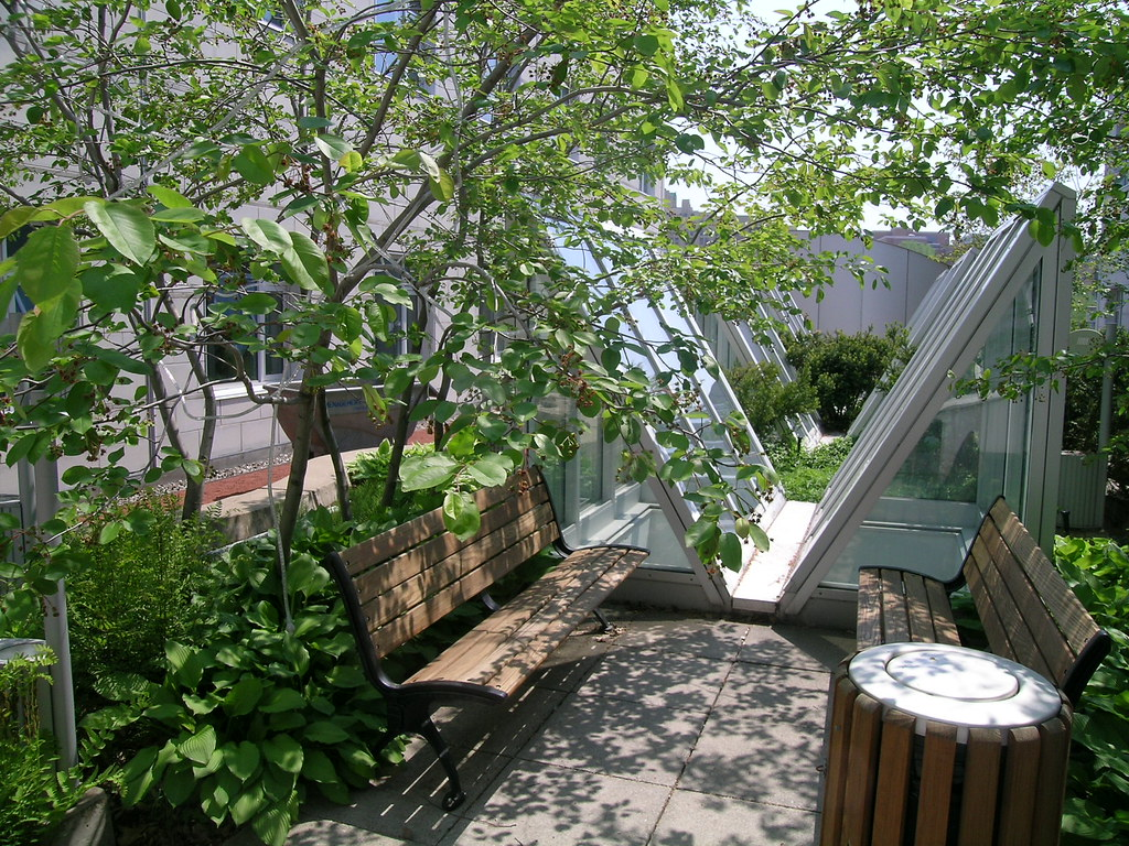 hec montr al jardin int rieur l 39 un des jardins int rieur flickr. Black Bedroom Furniture Sets. Home Design Ideas