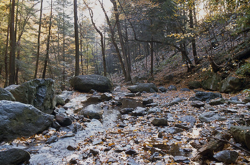 Winding Brook, Pocono Mountains, Pennsylvania | by toddheft
