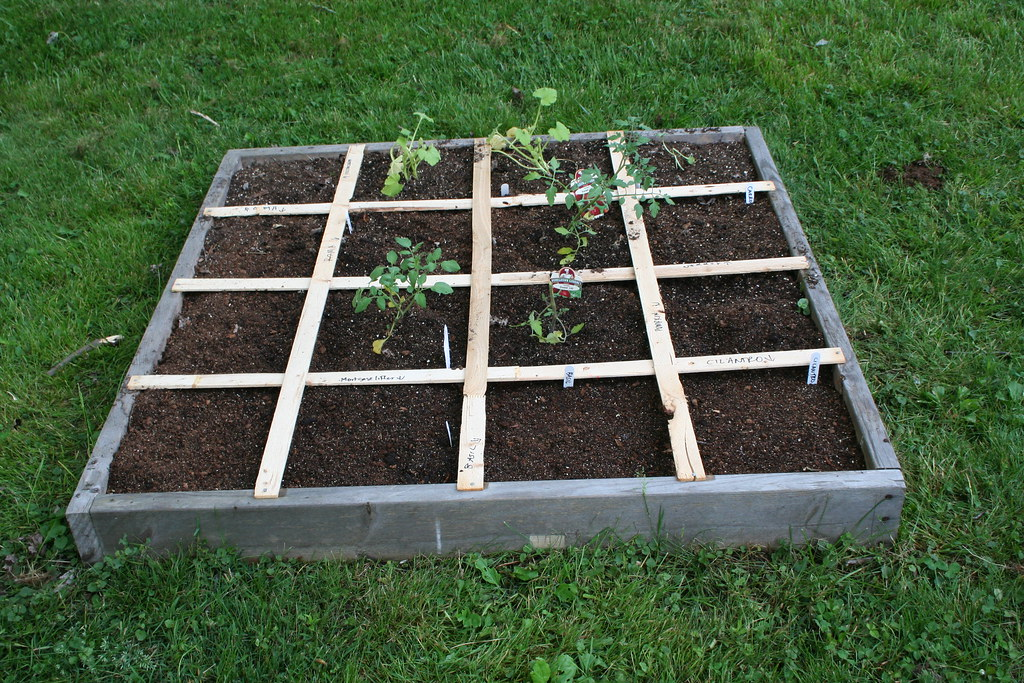 Square Foot Garden Box 2 Tomatoes Basil Zucchini Pumpk Flickr