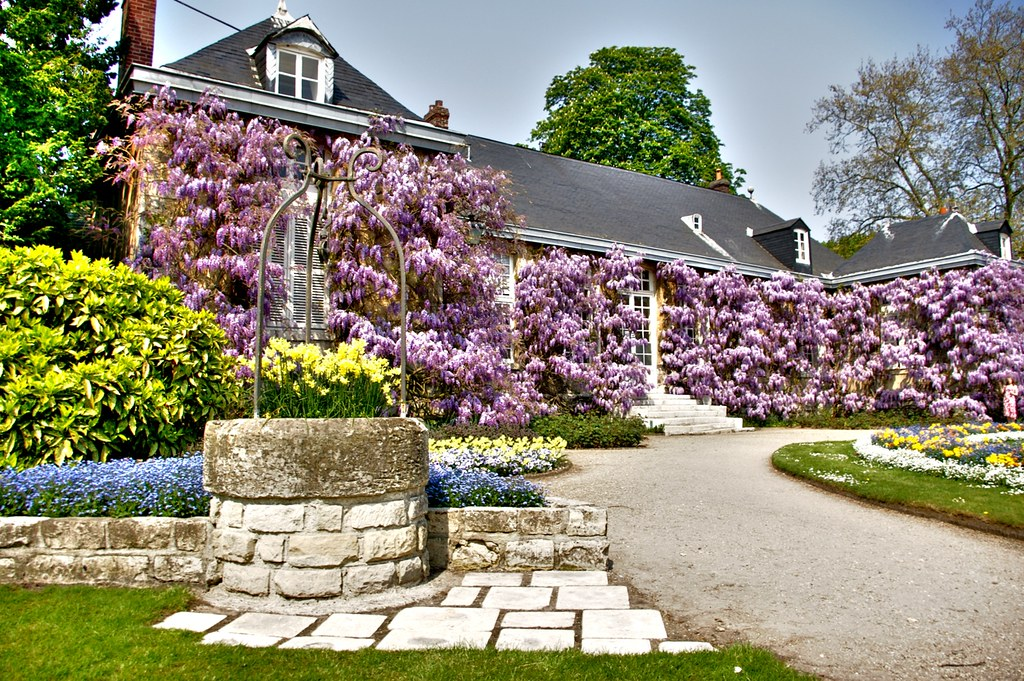 Rouen jardin des plantes 12 hdr 3xp artizen lock06 for Jardin de plante