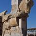 Toro, Persèpolis
