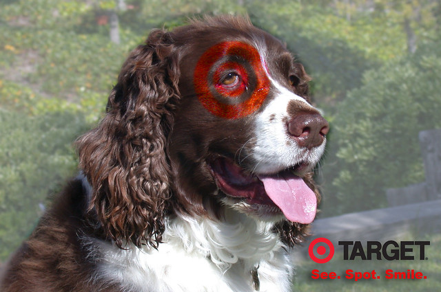 Target Ad Dog Food