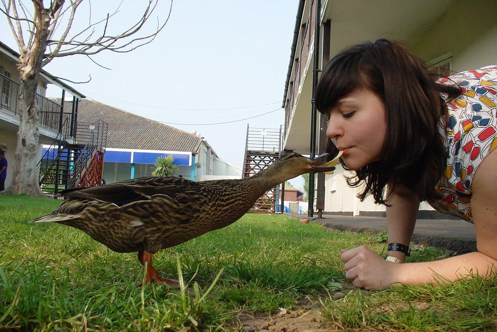 Lesbian Duck 121