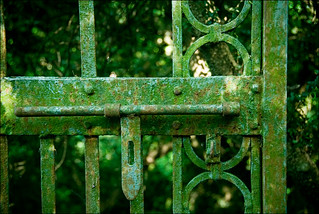 Green gate | by Salvatore Falcone