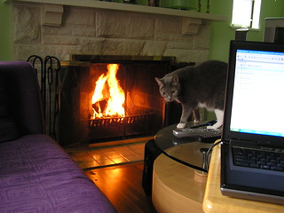 Day 2: Now THIS is what I call telecommuting... | by DDFic
