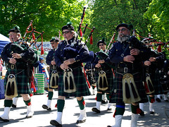 Bagpipers and Drummers at the Albany Tulip Festival | by Mountain Visions